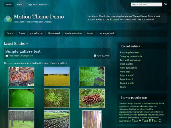 Motion WordPress Theme